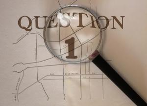 Magnifying.Q1