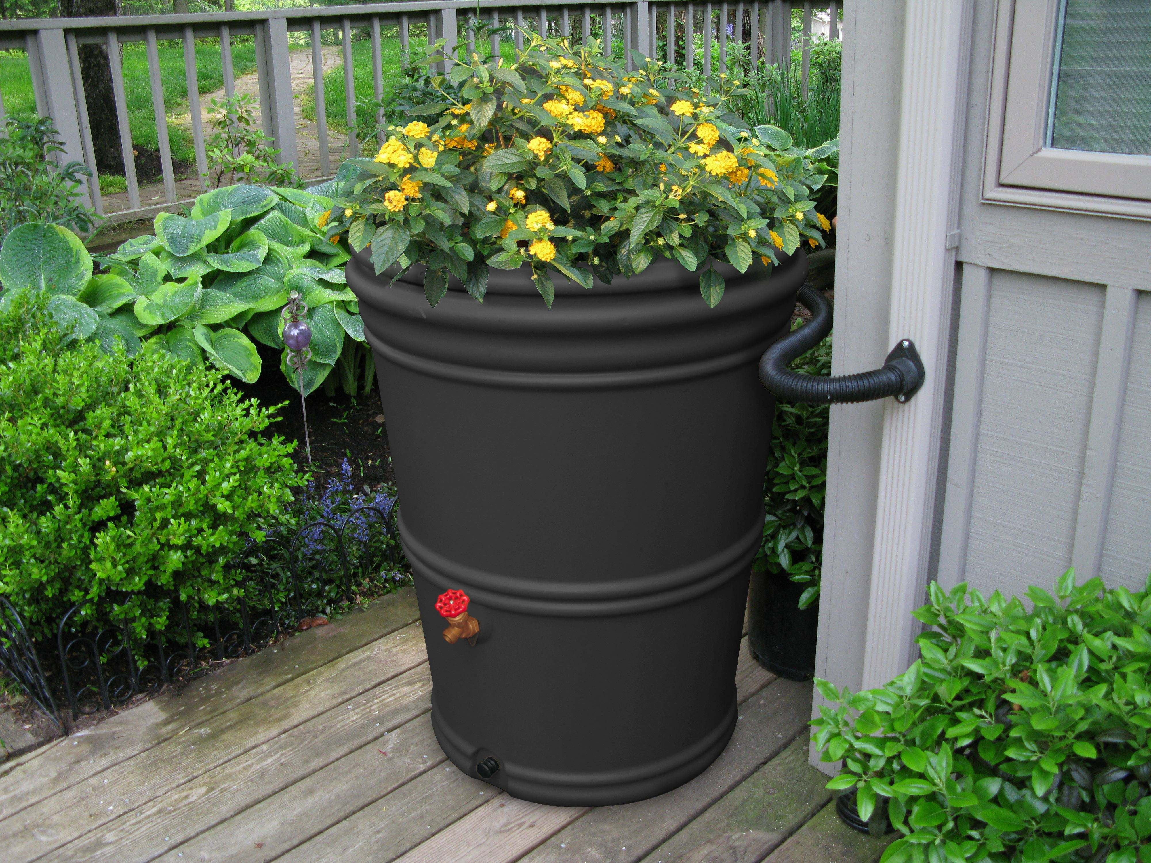 Free Rain Barrels Available to Alhambra Homeowners